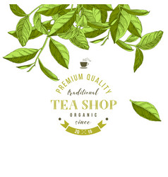 tea shop emblem with hand drawn tea leaves vector image