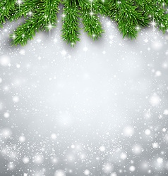 Fir christmas background vector image vector image