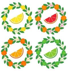 Citrus Wreath vector image vector image