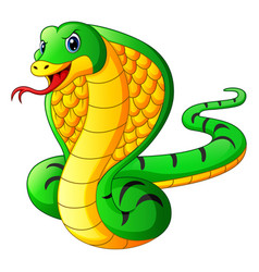 cobra snake cartoon vector image