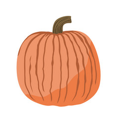 Cute pumpkin isolated vector