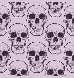 decorative human skulls seamless pattern vector image