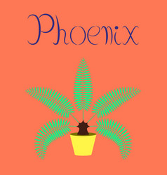 Flat on background natural phoenix vector