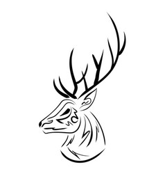 handdrawn sketchy deer head contour vector image