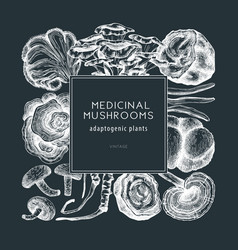 Medicinal mushroom frame on chalkboard vector
