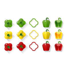 set green yellow red peppers vector image