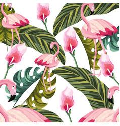 Tropical flamingo cartoon vector