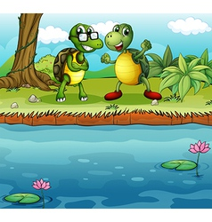 Two playful turtles near the pond vector image vector image