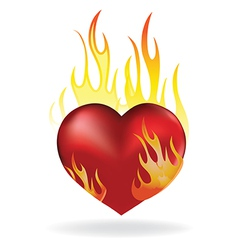 heart fire vector image