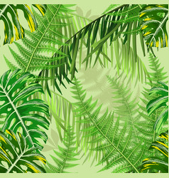 seamless pattern with tropical leaves and ferns vector image