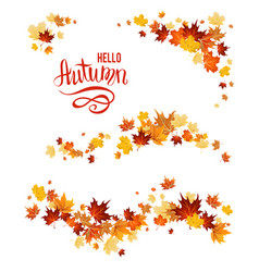 Autumn set maple leaves vector