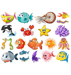 large set sea creatures on white background vector image
