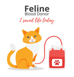 pet donor concept vector image