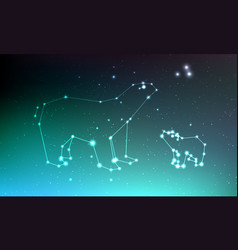 Ursa major and ursa minor constellation in night vector