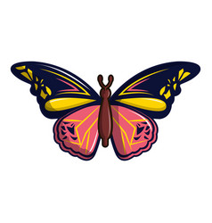 Wandered butterfly icon cartoon style vector