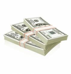 packs of dollars vector image