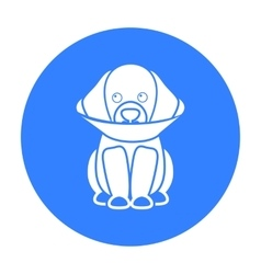 Sick dog icon in black style for web vector image
