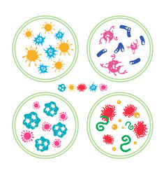 colorful bacteries in petri dish vector image
