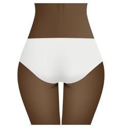 Beautiful woman s body in white bikini panties vector