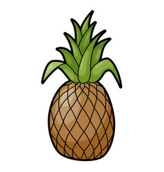 pineapple tropical aromatic large juicy sweet vector image