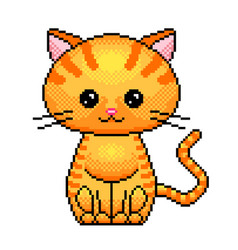 pixel cute cat detailed isolated vector image