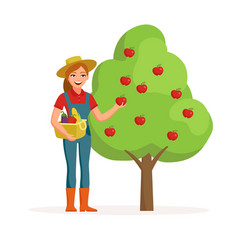 Woman farmer near apple tree holding ripe red vector