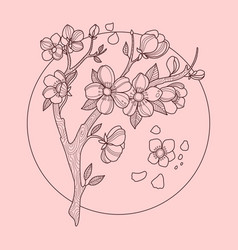 Cherry blossom color vector