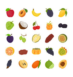Fruit flat icons vector