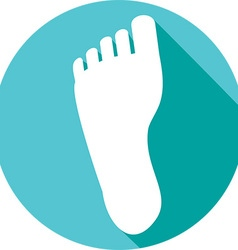 Human Foot Icon vector image