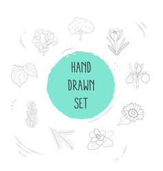 set of flora icons line style symbols with crocus vector image