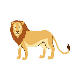 Stylized of lion vector