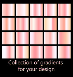 rose gold gradient collection collection of pink vector image