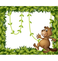 A beaver and the empty frame with vine plants vector
