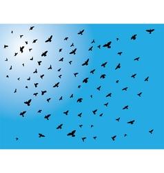 Flying birds vector
