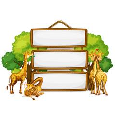 giraffe on blank wooden board vector image