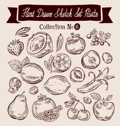 Hand drawn doodle set fruit vector image