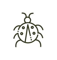 ladybug insect wildlife nature line design vector image
