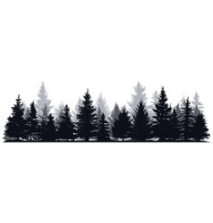 pine trees silhouettes evergreen coniferous vector image