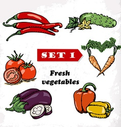 Set 1 Fresh vegetables of tomato eggplant pepper vector