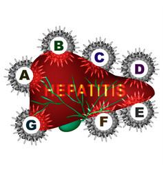 Types viral hepatitis hepatitis a b c d e vector