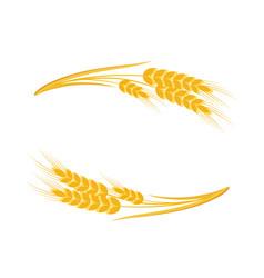 wheat ears frame vector image