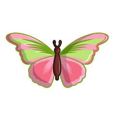 esmeralda butterfly icon cartoon style vector image