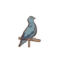Gray dove stand on the log vector