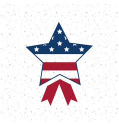 isolated usa star flag design vector image vector image