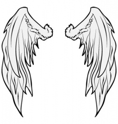 wings0001 vector image vector image