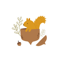 cute squirrel sitting in an acorn autumn scene vector image