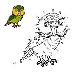numbers game kakapo vector image