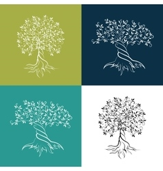 Olive trees isolated outline icon set vector image