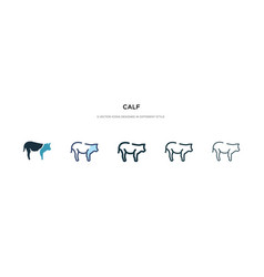 Calf icon in different style two colored and vector