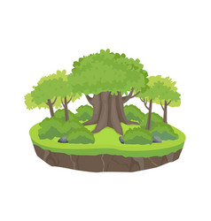 Green forest island old large oak tree with young vector